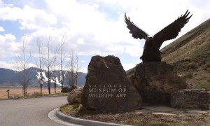 Kathryn Turner on the Arts in Jackson Hole
