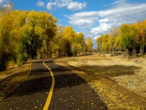Over 65 miles of pathways in Jackson Hole