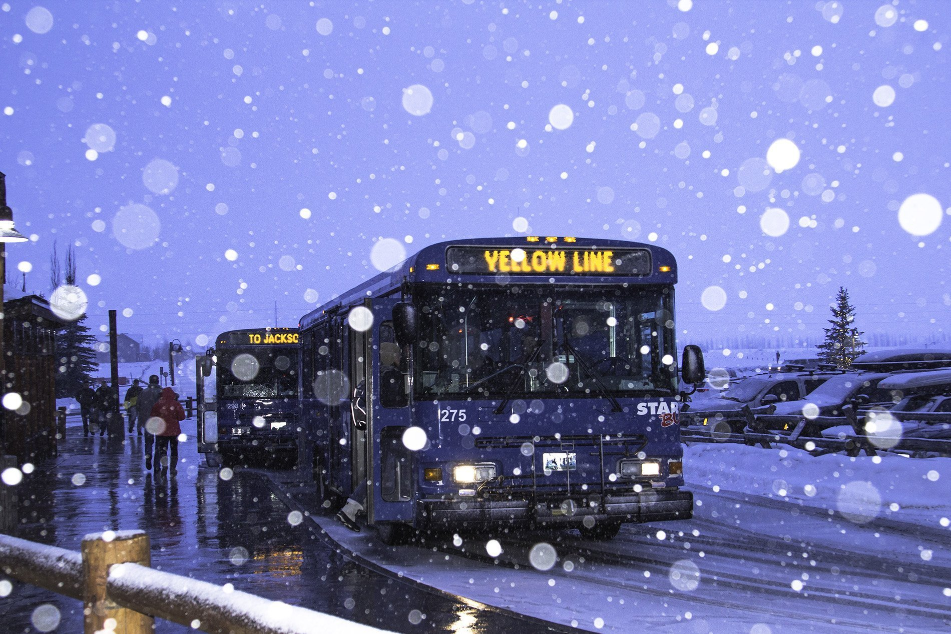 START, Jackson Hole's public transportation system, also logged a record year.